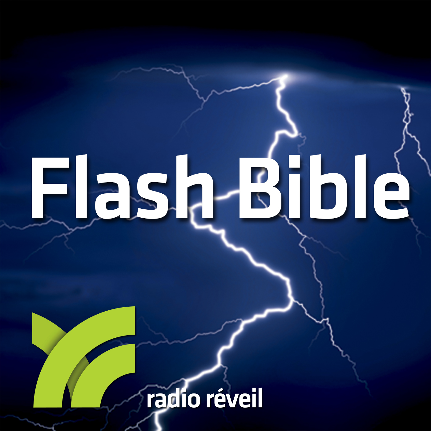 Flash Bible